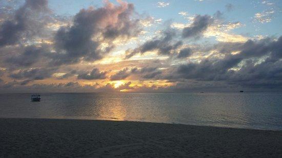 Alimatha Island : Alba