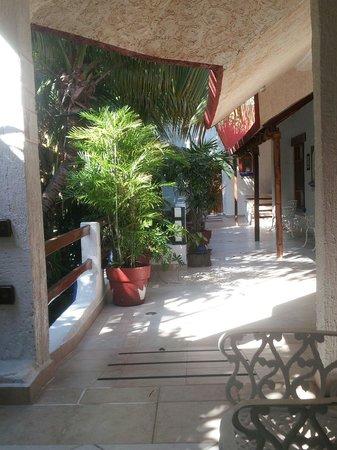 Eco-Hotel El Rey Del Caribe : Patio outside our Room