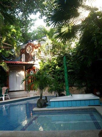 Eco-Hotel El Rey Del Caribe : So Refreshing!