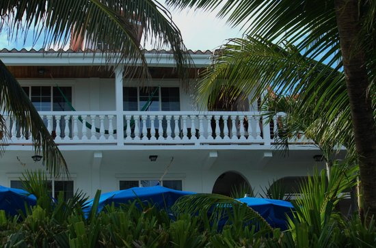Blue Tang Inn: Our room on the third floor with private deck and hammock
