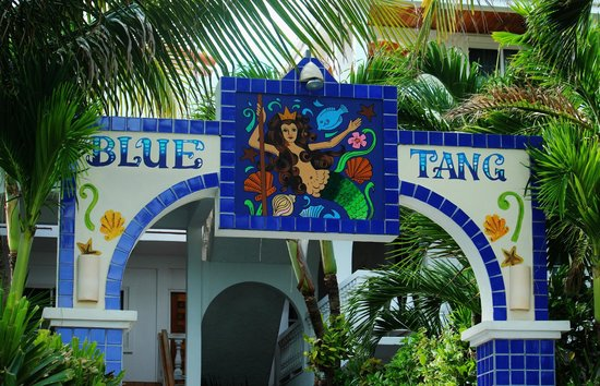 Blue Tang Inn: Entrance to the resort from the beach