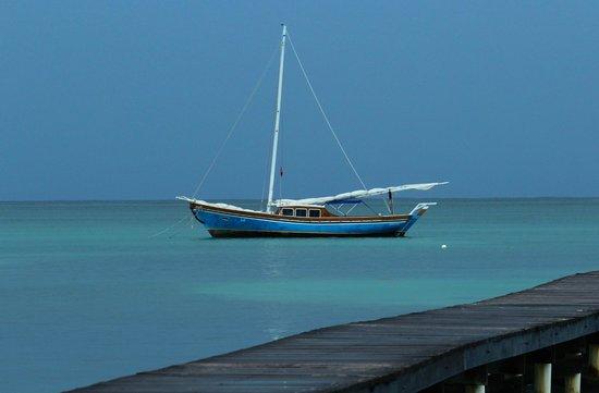 Blue Tang Inn: Serena Azul sailboat owned by the Blue Tang