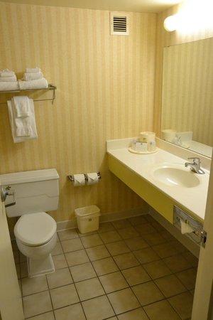Country Inn & Suites By Carlson Fergus Falls : Bathroom