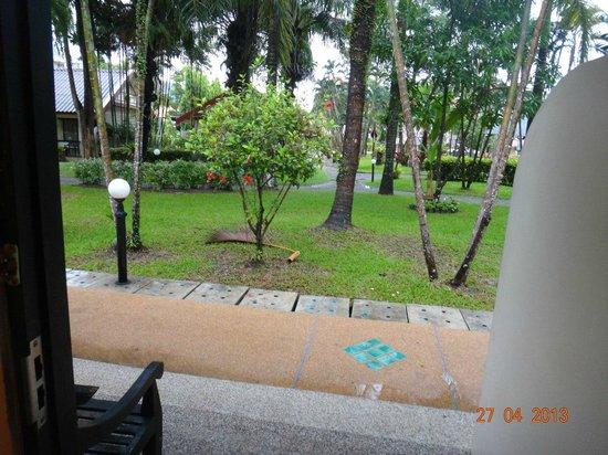 Deevana Patong Resort & Spa: территория отеля