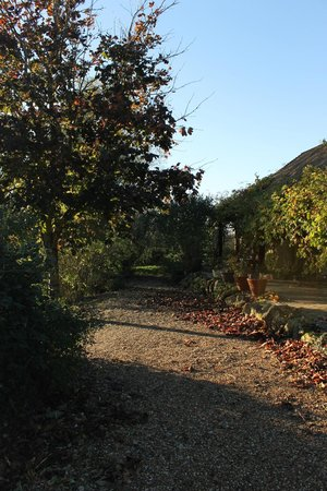 Elvey Farm : Hotel surroundings