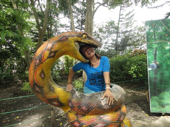 Davao Crocodile Park: This is not a real snake