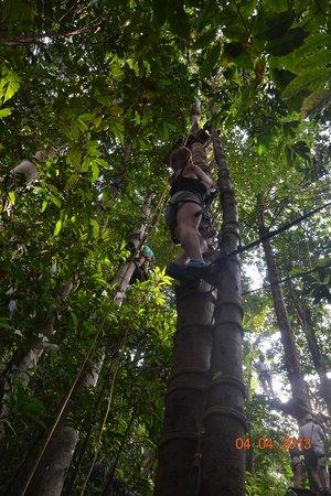Kongoi Trek  Mr. Rath: На высоте