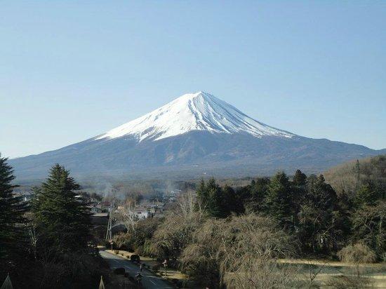 Fuji View Hotel: Vista do quarto do hotel!