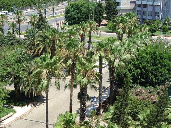 Ozkaymak Falez Hotel: Дорога в отель