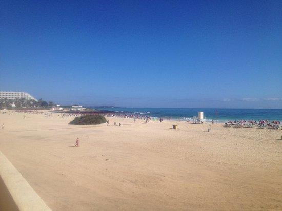 ClubHotel Riu Oliva Beach Resort : Beach