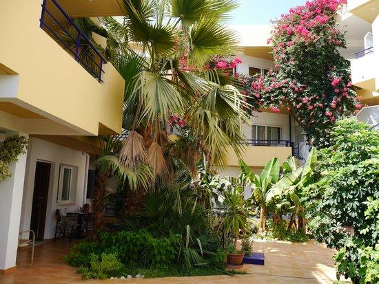 Faedra Beach Hotel : Внутренний дворик