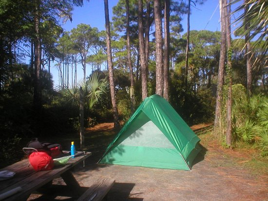 St. Joseph Peninsula State Park: Our campsite