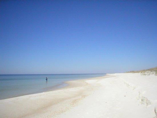 St. Joseph Peninsula State Park : Beautiful beach!