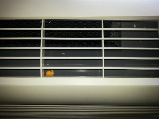 Extended Stay America - Austin - Metro: Food inside the AC unit