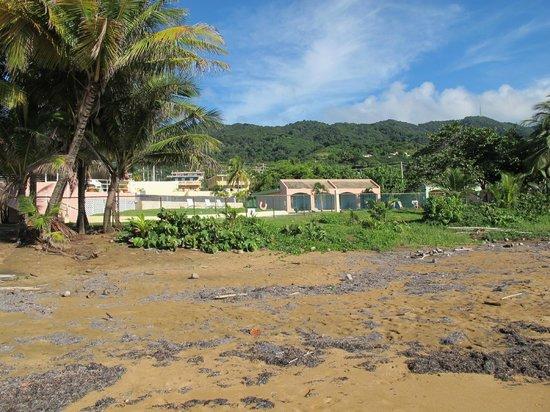 Parador MaunaCaribe: Some of the debris along the beach