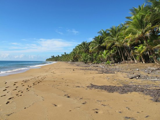 Parador MaunaCaribe: The best part is you have it all to yourself