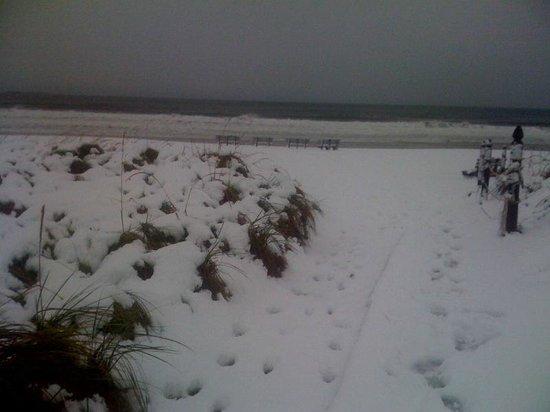BillowHouse: Winter in Ocean Park
