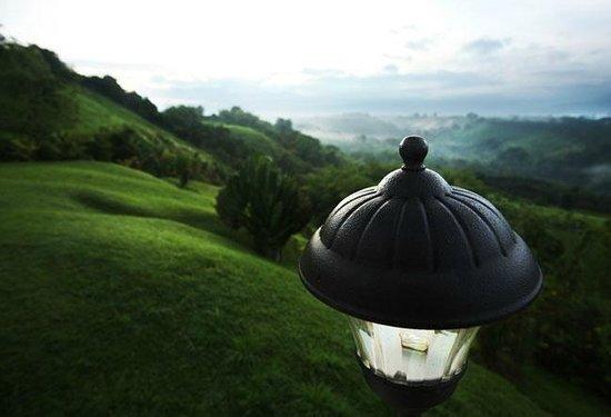 Hotel Mirador Las Palmas : Amplias Zonas verdes