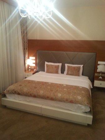 Gravis Suites: Представительский двухместный номер с 1 кроватью