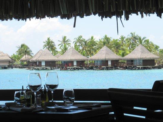 The Lotus Restaurant: Vu de la Terrase du Lotus