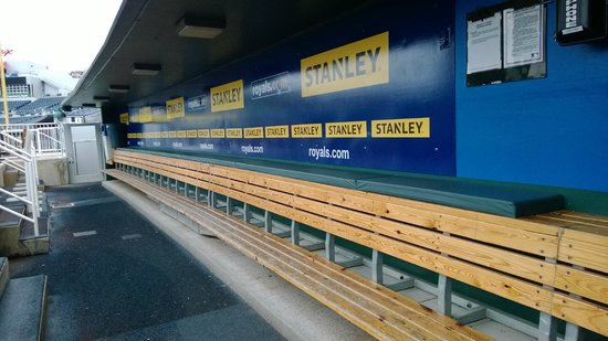 Kauffman Stadium : The dugout