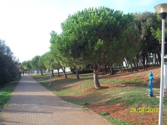 Park Plaza Histria Pula: Парковые дорожки.