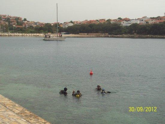 Park Plaza Histria Pula: Погружение с аквалангами.