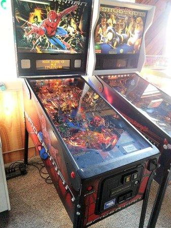 Arcade Family Fun : spiderman pinball