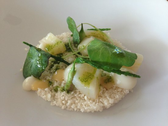 Bloom in the park: Scallops