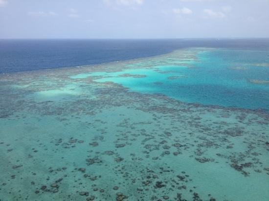 Sanganeb National Park: Sanganeb reef