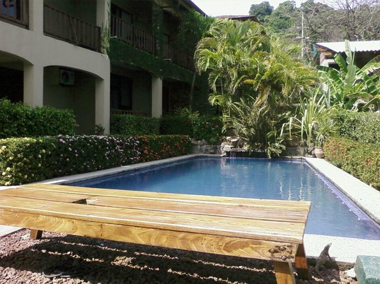 Backyard Hotel: Well maintained and  ready for a dip after a couple Migalitos.