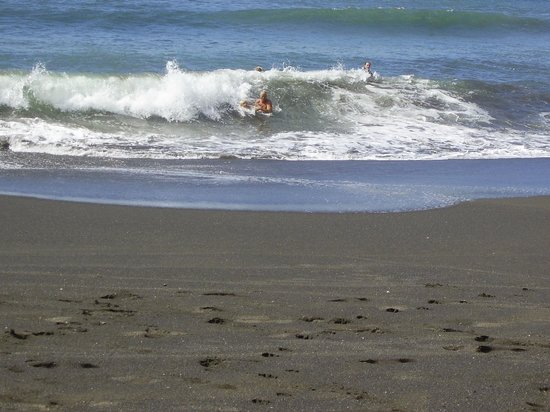 Backyard Hotel: Surf is up for miles along one of the top surfing beaches in Costa Rica and it is right outside