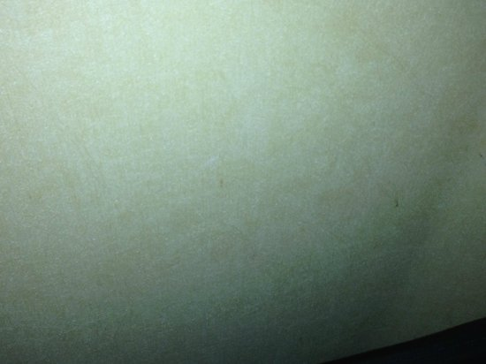 DoubleTree Suites by Hilton Doheny Beach - Dana Point: Blood stains on walls