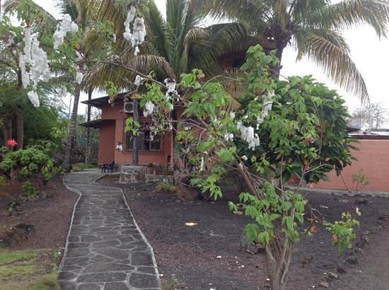 Mi Caleta Inn: jardín