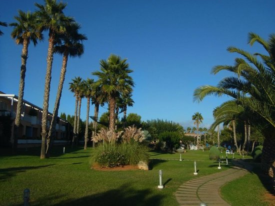Hotel Apartamentos Princesa Playa : Beautiful gardens