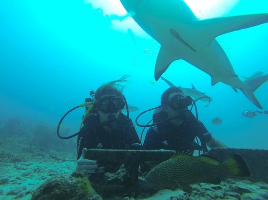 Ocean Explorers Dive Center: Photo taken of us by one of our fabulous crew members!