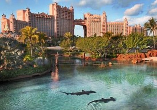 Hotel Riu Palace Paradise Island: From room view-Atlantis