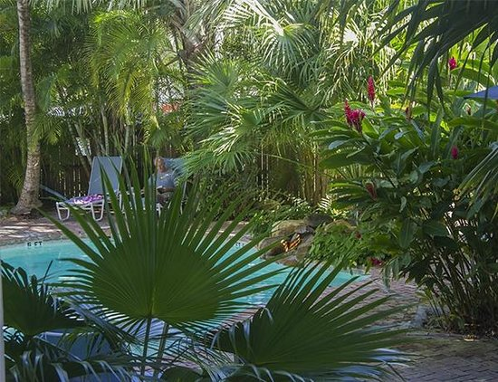 Angelina Guest House: Gorgeous garden surrounding pool