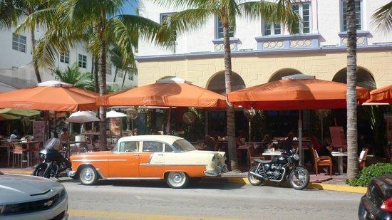 Beacon South Beach Hotel : Happy Days