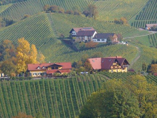 Weingasthof Sabathihof: Blick auf den Sabathihof