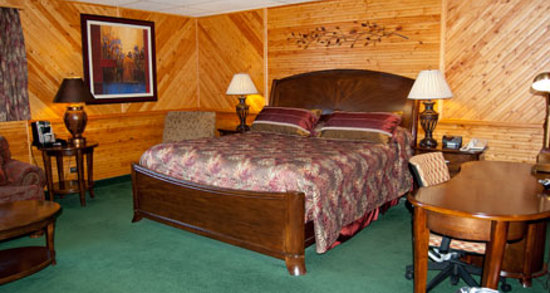 Pinewood Motor Inn: Our King Room