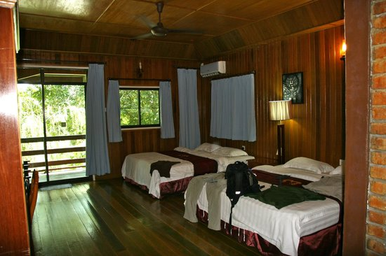 Kota Kinabatangan, Malasia: Huge rooms