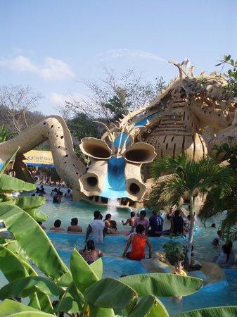 Carrizal Spa: Dragon de frente
