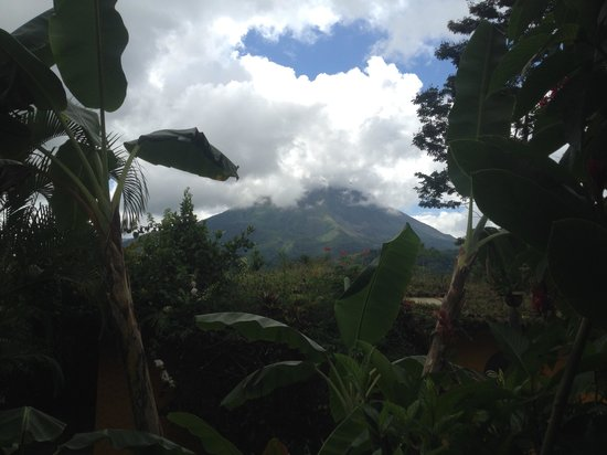 Hotel Mountain Paradise : view from the room
