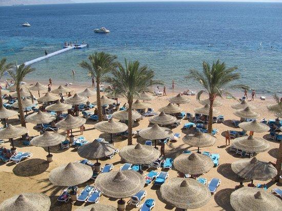 Island View Resort: Lovely beach
