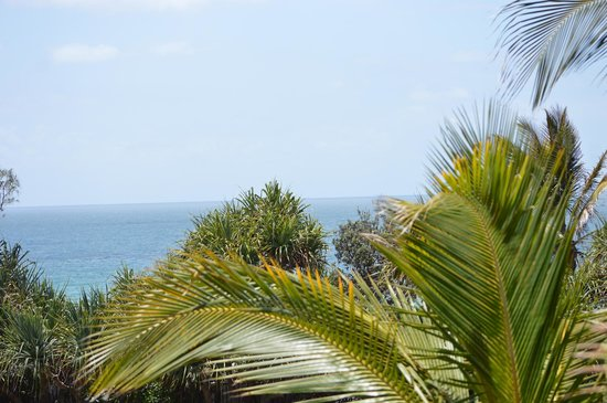 Beach Breakers Resort : the view from our room