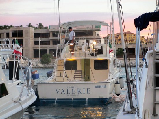 Comfortable valerie boat by pisces picture of pisces for Pisces fishing cabo