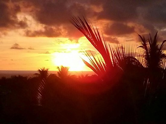 Vivo Escondido Hostel: Sunset from the rooftop