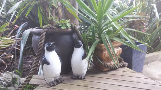 Seas The Day B&B: cute penguins outside the Driftwood room