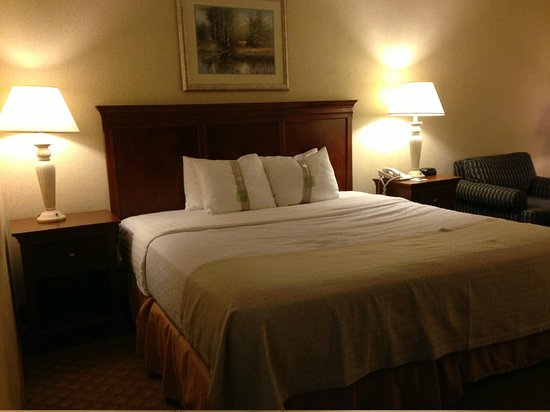 Clarion Hotel: Comfy Bed